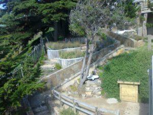Landscaped garden at Cabaña Palafitos